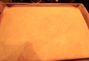 Pour the batter into the prepared jelly roll pan, bake  and in about 12-15 minutes you've got cake!