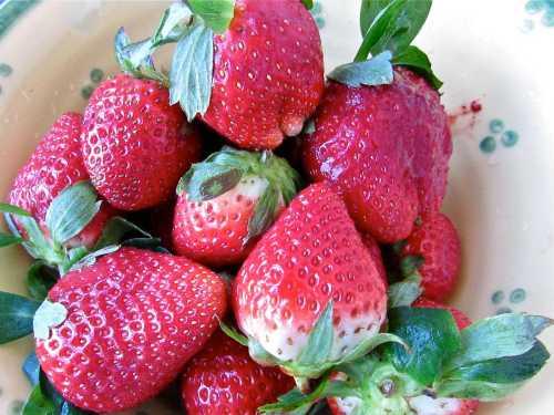 Fresh strawberries always make me feel the love!