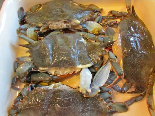 Here are my crabs waiting for their milk bath.